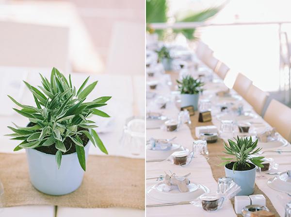 διακοσμηση-με-αρωματικα-φυτα