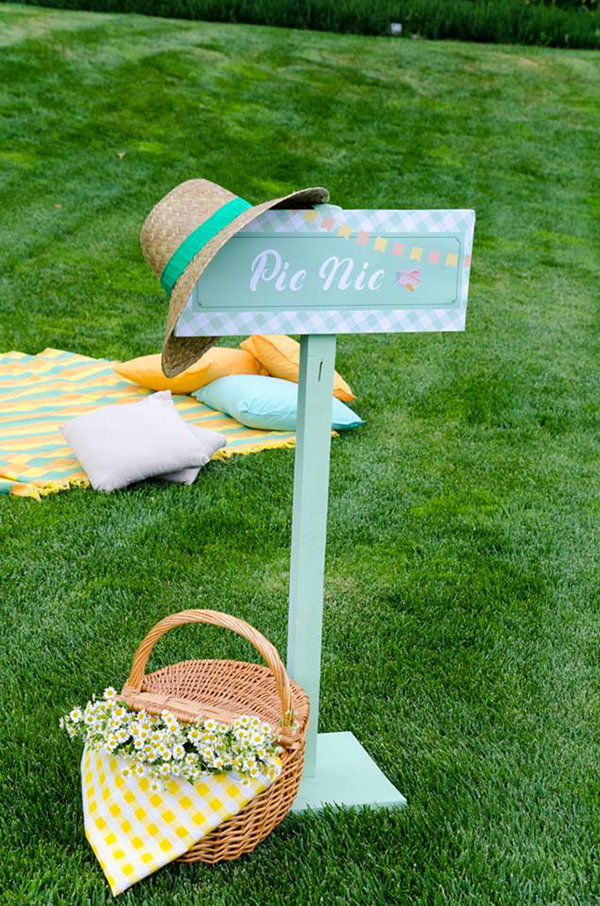 boy-baptism-with-picnic-theme-9