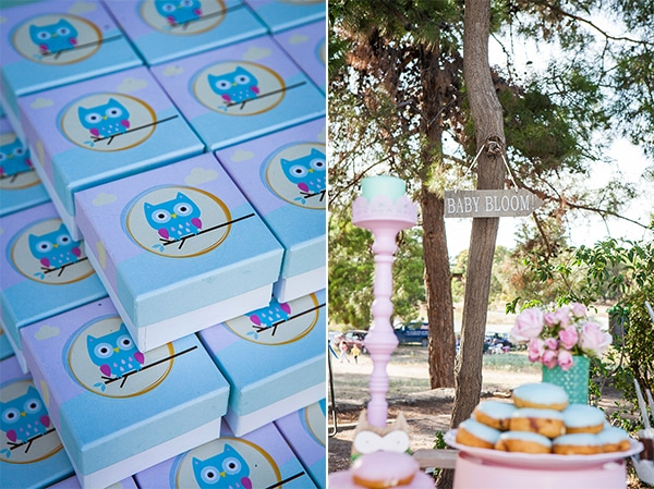 beautiful-owl-theme-baptism-ideas-_05A