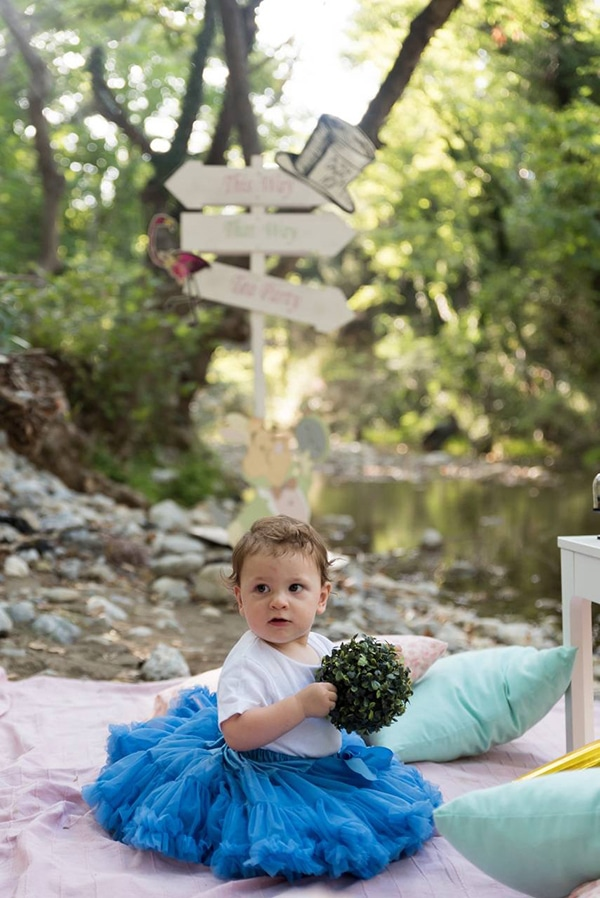 first-birthday-theme-alice-wonderland_08