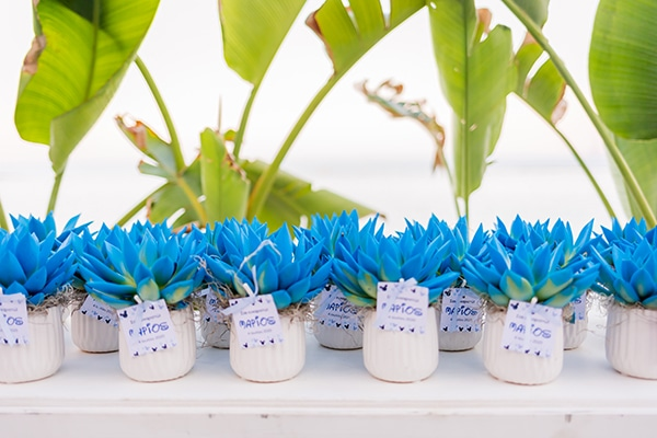 summer-boy-baptism-ideas-decoration-blue-white-_11