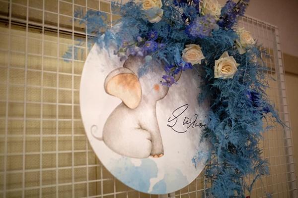 decoration-ideas-boy-baptism-elephant-theme_01x
