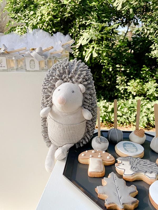montern-boy-baptism-decoration-ideas--hedgehog-theme_03w