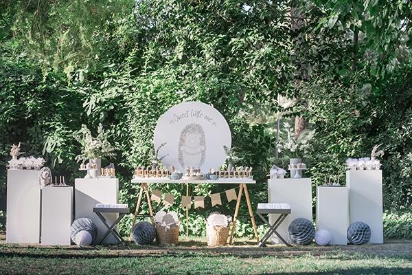 montern-boy-baptism-decoration-ideas--hedgehog-theme_05